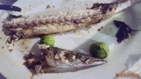 Taverne To Bogazi, der Fisch war köstlich