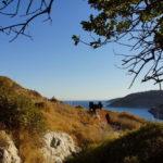 Blick auf die Bucht Agathonisi -Megalo Chorio