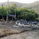 Hayit Bükü, Restaurant Ogün's