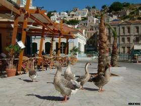Impressionen rund um den Hafen Gialos