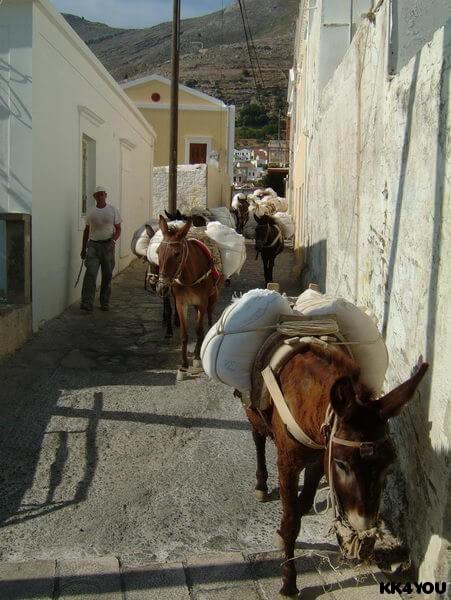 Symi -Besuch in der Oberstadt -Chorio- das Verkehrsmittel ist dort der Esel