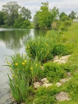 Im Jagsttal und auf den Spuren der Römer -Stausee Stockmühle
