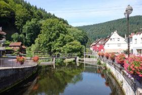 Mündung Kleine Enz in Calmbach