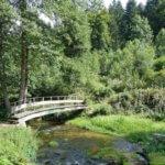 Radtour Enz und Kleine Enz zwischen Enzklösterle und Calmbach