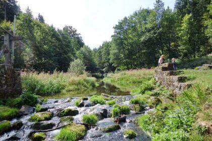 Picknickstelle Flößerhütte an der kleinen Enz