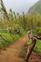 Wanderweg als Alternative zur Seilbahn von Achadas da Cruz