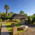 Pirschfahrt von der Vreugde Guest Farm in den Etosha Park