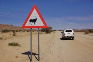 wo stecken die Oryx?