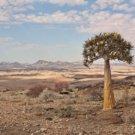 Namibia Rundreise zwischen Etosha, Fish River und KTP