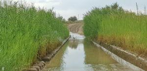 Wasserdurchfahrt zum Naute Damm