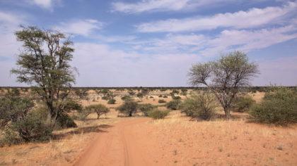 Zufahrt nach Gharagab