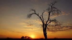 Sonnenuntergang am Gharagab Hide
