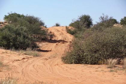 Kritischer 4x4 Trail von Gharagab Richtung Nossob