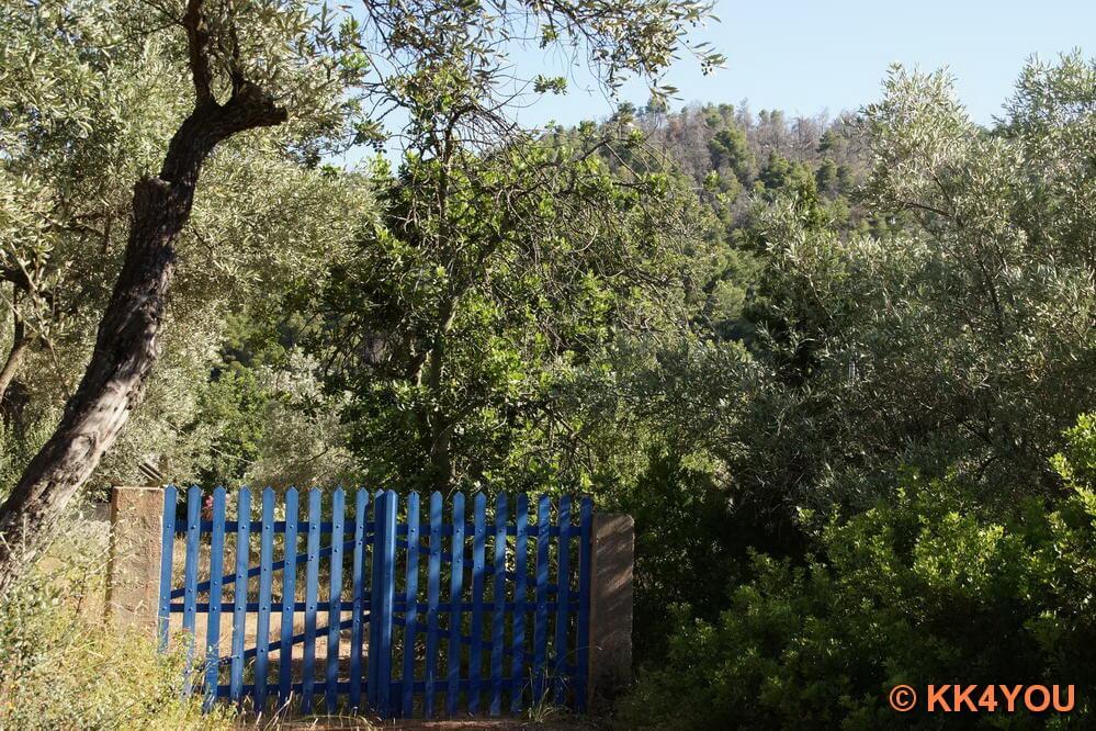 herliche Gärten in Panormos