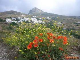 Exombourgo -mittelalterliche Hauptsiedlung von Tinos