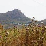 Inselrundfahrt Tinos