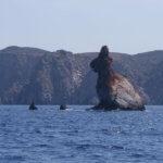 Küstenrundfahrt - Arkoudes (Felsen im Meer im Norden von Milos