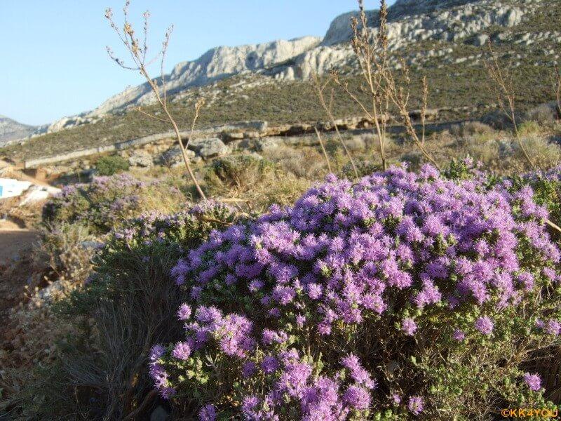 Kalymnos -Ormos Palaio