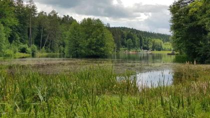 Welzheimer Radtour -Ebnisee