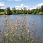 Welzheimer Radtour durch Wald- und Seenlandschaft